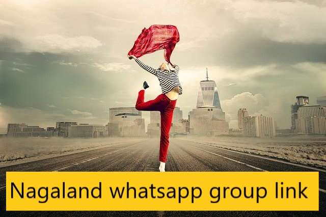 Nagaland whatsapp group link