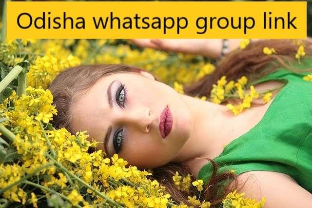 Odisha whatsapp group link