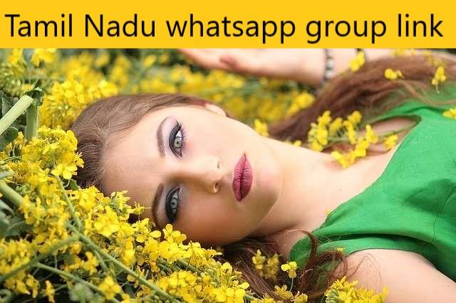 Tamil Nadu whatsapp group link
